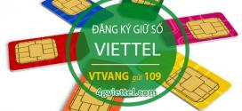 Hướng dẫn cách giữ sim Viettel nhiều năm không sử dụng