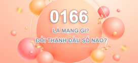 0166 là mạng gì? Sim đầu số 0166 đổi thành đầu số nào?